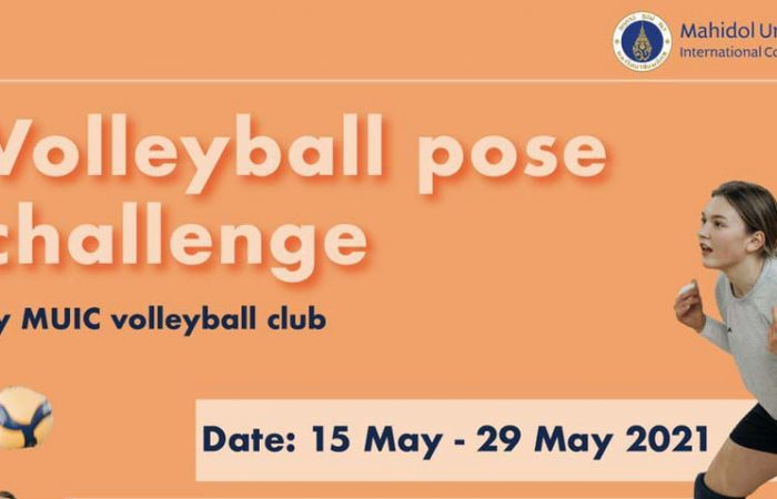 1000_volleyball_pose
